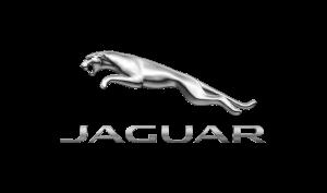 Jerry Pelletier-Voice Over Jaguar Logo